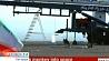 Иран сегодня запустил в космос биокапсулу с обезьяной Іран сёння запусціў у космас біякапсулу з малпай