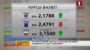 На АЗС «Белоруснефть» снизились цены на дизельное топливо на 1 копейку и бензин на 2 копейки