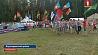 """Молодежный лагерь """"Бе-Lа-Русь"""" уже 27-й раз собирает молодежь  Моладзевы лагер """"Бе-Lа-Русь"""" ужо 27-ы раз збірае моладзь"""