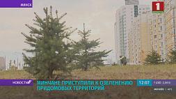 Минчане приступили к озеленению придомовых территорий Мінчане пачалі   азеляняць прысядзібныя  тэрыторыі