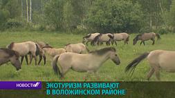 Экотуризм развивают в Воложинском районе