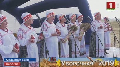 Витебская область завершила уборку зерновых колосовых