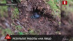 Канал поставки наркотиков из России перекрыт, дилер задержан