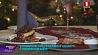 Кулинарную книгу Радзивиллов воссоздали в Несвижском районе Кулінарную кнігу Радзівілаў аднавілі ў Нясвіжскім раёне