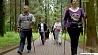 Все большую популярность  набирает скандинавская ходьба  Усё большую папулярнасць  набірае скандынаўская хадзьба