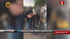 Белорусские пограничники задержали несколько групп нелегалов, которые  пытались попасть в Польшу