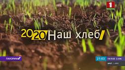 Посевная кампания и успехи молодой аграрной смены  Пасяўная кампанія і поспехі маладой аграрнай змены