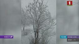 Зима вновь пришла в конце марта