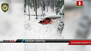 По горячим следам инспекторы природоохраны в Осиповичском районе поймали браконьера