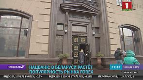 В Беларуси растет популярность рынка Forex.