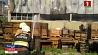 Девять единиц спецтехники тушили пожар в производственном цеху в Борисове Дзевяць адзінак спецтэхнікі тушылі пажар у вытворчым цэху ў Барысаве