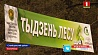 Неделя леса стартовала сегодня в стране Тыдзень лесу стартаваў сёння ў краіне Forest Week starts in Belarus