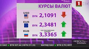 Индикативный баланс поставок российской нефти в Беларусь подписан