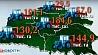 Пять сотых процента площадей осталось засеять в Беларуси Пяць сотых працэнта плошчаў  засталося засеяць у Беларусі