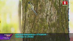 Позвонить птицам - и услышать их песни Патэлефанаваць птушкам - і пачуць іх спевы One can call and listen to birds  sing