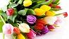 Поздравление с  Днем женщин Віншаванне з  Днём жанчын Congratulations to women
