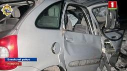 Дикое животное спровоцировало крупную аварию в Вилейском районе Дзікая жывёла справакавала буйную аварыю ў Вілейскім раёне