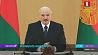 Президент подписал распоряжение о допмерах по решению актуальных вопросов белорусов