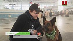В Брестском аэропорту снимают фильм  о собачьей  преданности