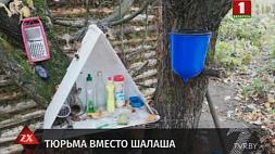 Суд вынес приговор отшельнику, который 6 лет жил в лесу и обчищал чужие дома