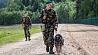В Беларуси предотвратили попытку прорыва через госграницу У Беларусі прадухілілі спробу прарыву праз дзяржмяжу