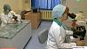 С начала года в Минске зафиксировано около пяти тысяч укусов клещей З пачатку года ў Мінску зафіксавана каля пяці тысяч укусаў кляшчоў