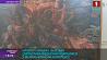 """Выставка """"Художник, который рисует время"""" открылась в мемориальном комплексе """"Хатынь""""  Выстава """"Мастак, які малюе час"""" адкрылася ў мемарыяльным комплексе """"Хатынь"""""""