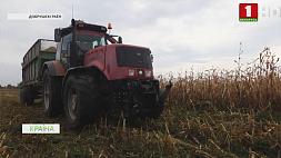 В сельскохозяйственных предприятиях Гомельской области продолжаются полевые работы  У сельскагаспадарчых прадпрыемствах Гомельскай вобласці працягваюцца палявыя работы