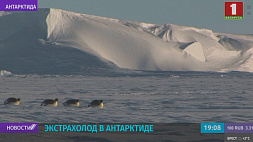 """На станции """"Восток"""" в Антарктиде зафиксировали самую низкую температуру с марта 1982 года - минус 75,3"""