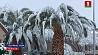 Мощнейший снегопад обрушился на Лас-Вегас Самы моцны за апошнія 82 гады снегапад абрушыўся на Лас-Вегас